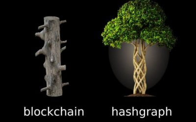 Hedera Hashgraph – A Quick and Very Simple Explanation